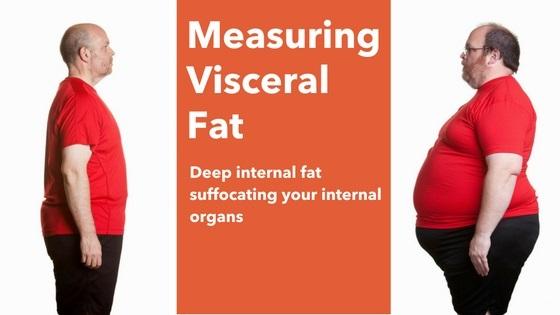 measuring visceral fat banner