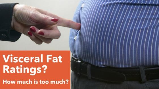 visceral fat ratings banner