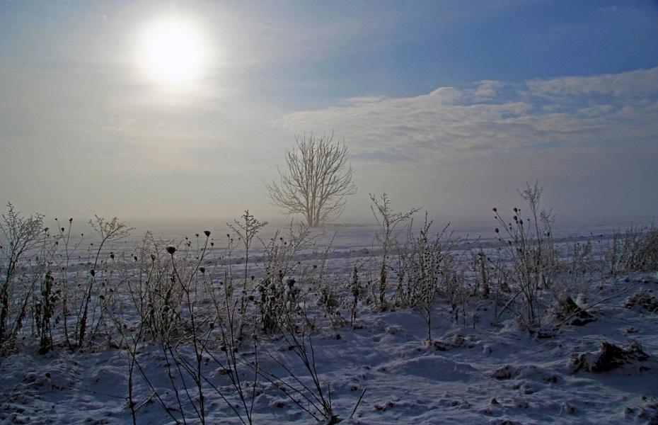 winter sunshine landscape