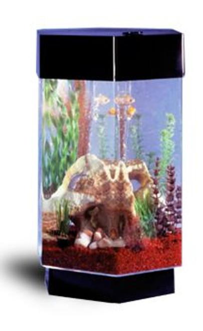 TT-800 Hexagon AquaScape