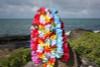 "Baby Carnation Assorted, 6 Pack 18"" - Hawaii Silk Leis"