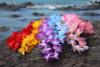 """Silk Leis Azalea Assorted, 6 Pack 18"""" - Hawaii Silk Leis"""