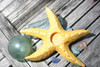 """STARFISH"" CANDLE HOLDER - YELLOW COASTAL 9"" - COASTAL DECOR"