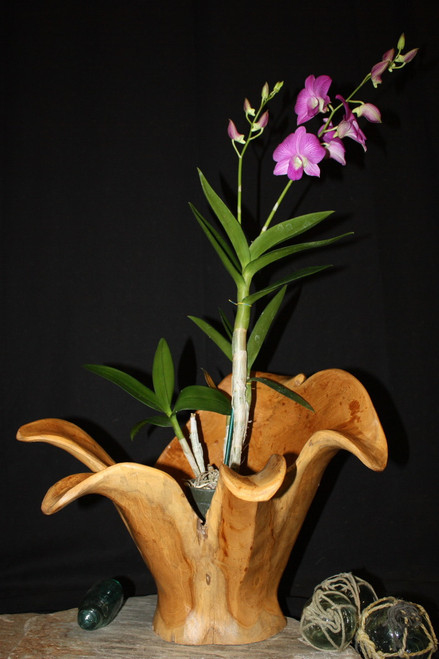 "Wooden Vase Rustic Bowl Sculpture 16"" X 14"" X 14"" 