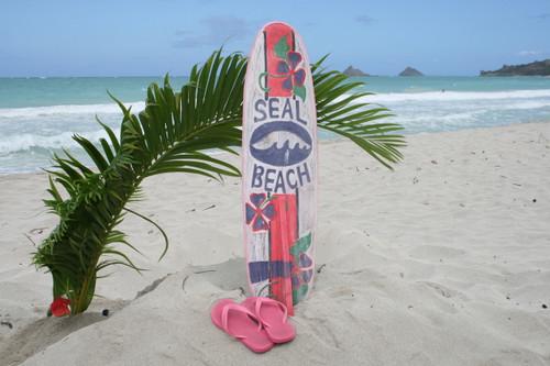 """SEAL BEACH"" SURF SIGN W/ FIN 40"" - SURFING DECOR"