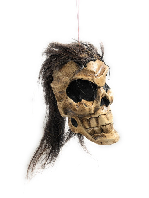 "Shrinking Head 8"" - Male Hanging Skull Head 