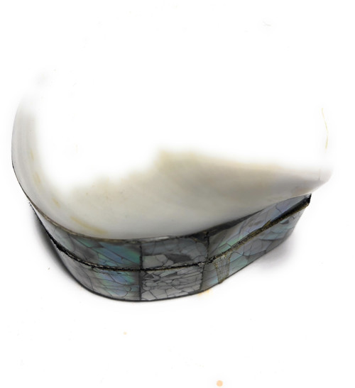 Seashell Keepsake Box Small - White - Coastal Decor | #sur28002