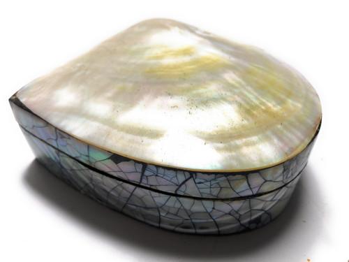 Seashell Keepsake Box Medium - Gold - Coastal Decor | #sur28005