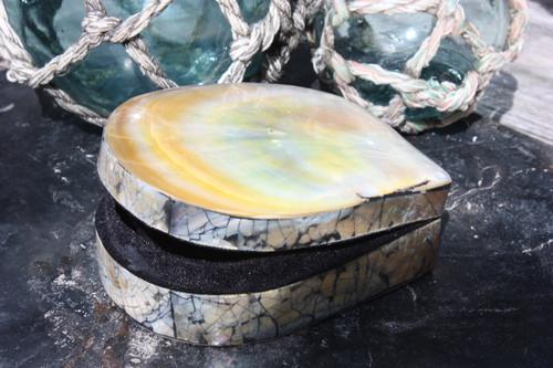 Seashell Keepsake Box Large - Gold - Coastal Decor