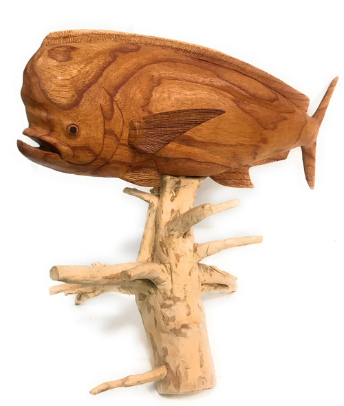 "Mahi Mahi Hand Carved 32"" w/ Drift Wood Base 