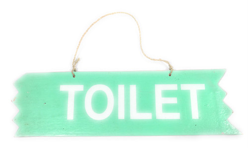 "Cute ""Toilet"" Wooden Sign 12"" X 4"" - Turquoise 