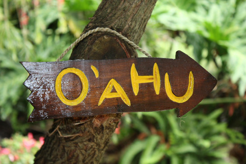 """""""OAHU"""" DRIFTWOOD SIGN 12"""" - POOL DECOR"""