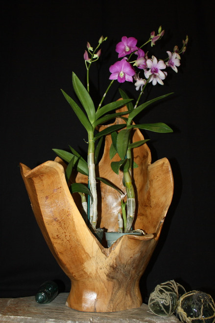"Wooden Vase Rustic Bowl Sculpture 15"" X 12"" X 24"" 