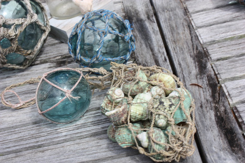 Green Seashell w/ Netting Bag - Coastal Living