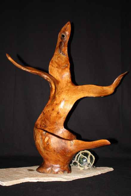 """Seal"" Centerpiece Wood Bowl Sculpture 30"" - Local Artist Designer Collection"
