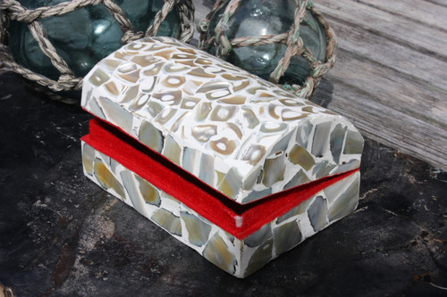 Seashell Keepsake Box Large - White - Coastal Decor