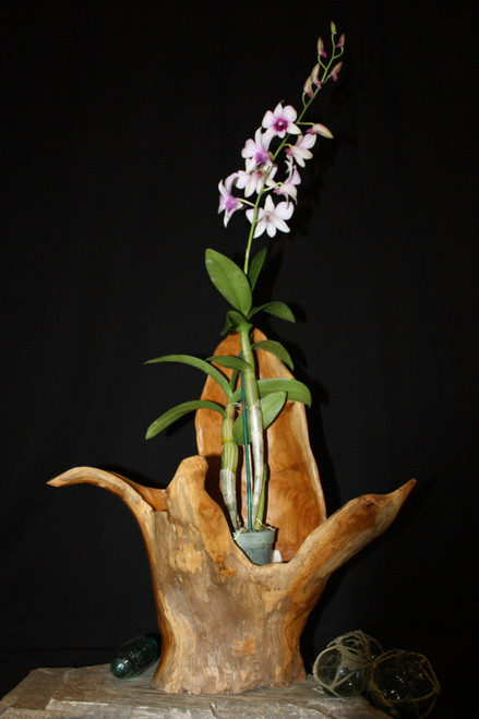 "Wooden Vase Rustic Bowl Sculpture 19"" X 10"" X 21"" | #hwa191"