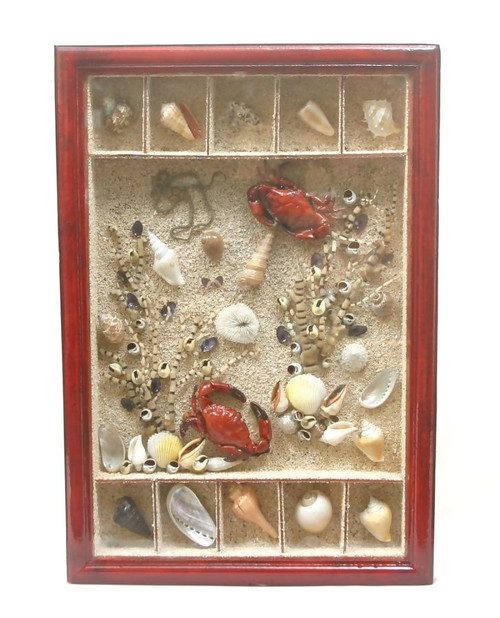 "FRAMED SEA COLLAGE 12""X20"" - COASTAL /BEACH DECOR"