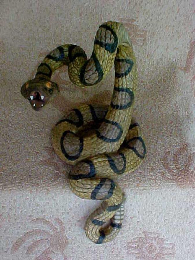 Texas Rattle Snake D2238