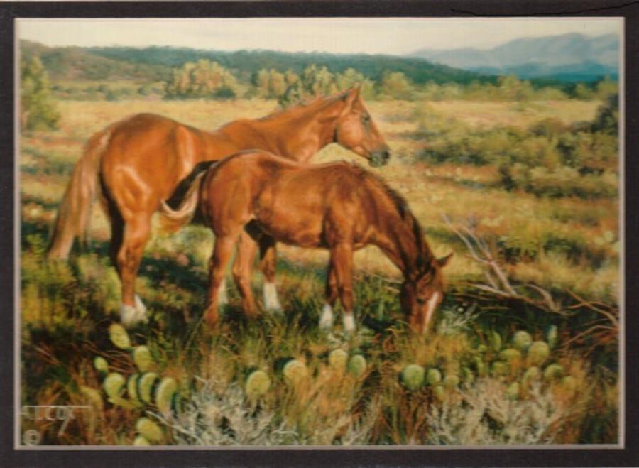 ART-TC-00022  Western Horse Sorrels in the Sun Print