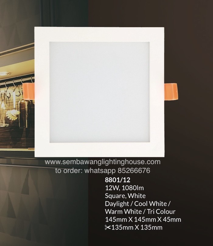 8801-1-led-downlight-sembawang-lighting-house.jpeg
