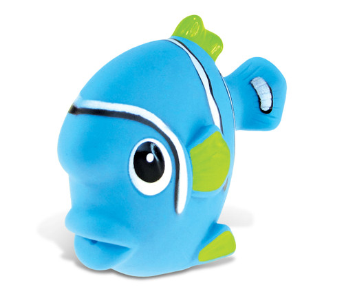 Squirter  Blue Fish