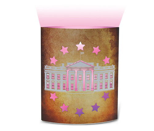 The White House Led Lantern