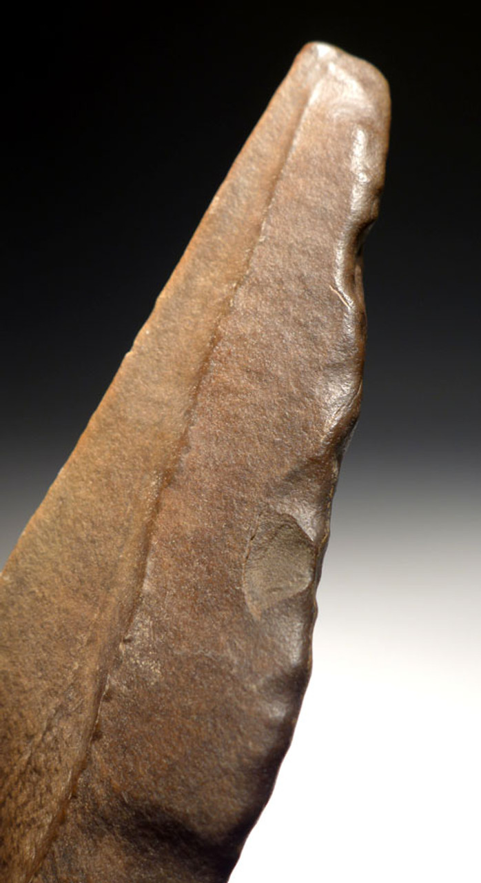 ACH222 - LARGE MUSEUM-GRADE STONE AGE HOMO ERGASTER ACHEULIAN HAND AXE FOR LARGE GAME BUTCHERING FROM AFRICA