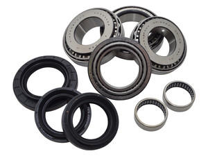 Discovery 4 Rear Differential Bearing Overhaul Kit - DA5035