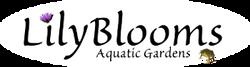 Lilyblooms Aquatic Gardens