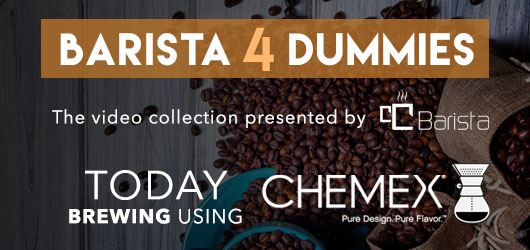 /blog/barista-4-dummies-brewing-with-chemex/