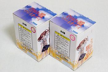 Set Of 2 Toaru Kagaku no Railgun Pura-Pura Figure Mikoto&Kuroko SEGA JAPAN ANIME