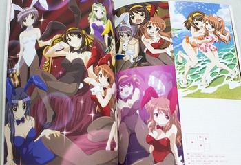 The Melancholy of Haruhi Suzumiya MIKURU Art Illustration Book JAPAN ANIME