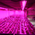 4 Foot 15 Watt Hybrid LED T8 Red and Blue Grow Lights