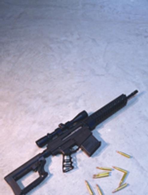 New  .30-06 AR - BN36 Carbine Assassin-X for 2016