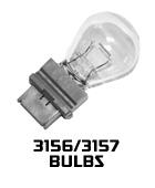 3156-3157-bulbs.jpg