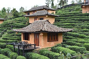 Tea-House-Yunnan