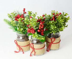 CHRISTMAS PLANT BERRY IN G
