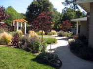 Landscaping for Functionality