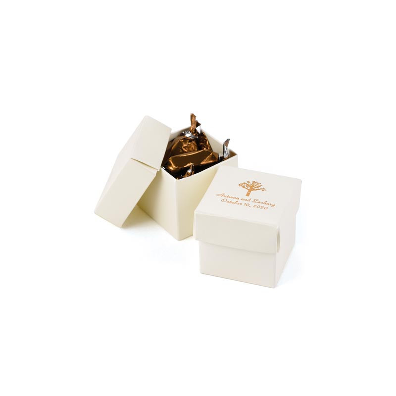 Ivory Shimmer 2 piece Favor Boxes (Pack of 25)