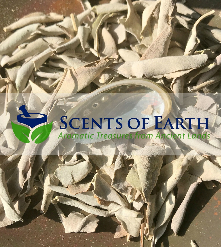 White Sage Leaves & Mini Abalone Shell Set