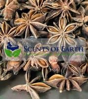 Anise - Whole Star (Illicium verum) - China
