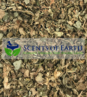 Patchouli Leaves (Pogostemom cablin)  - India