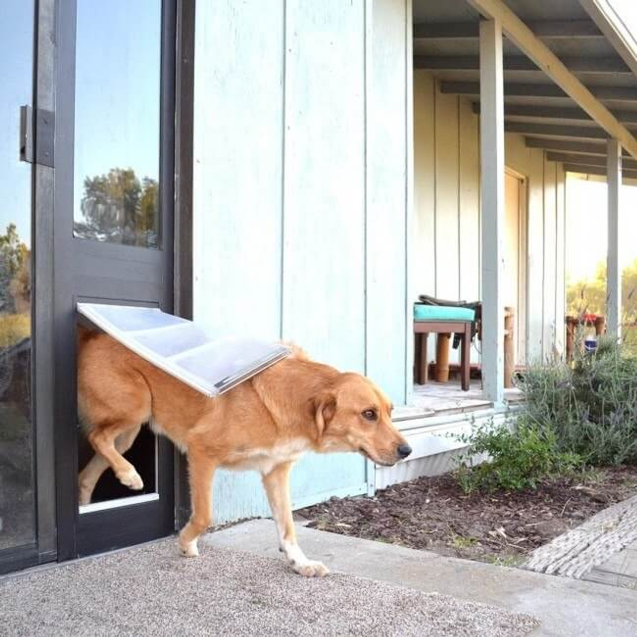Thermo Panel 3e Endura Flap dog doors feature low e glass and excellent weather resistance