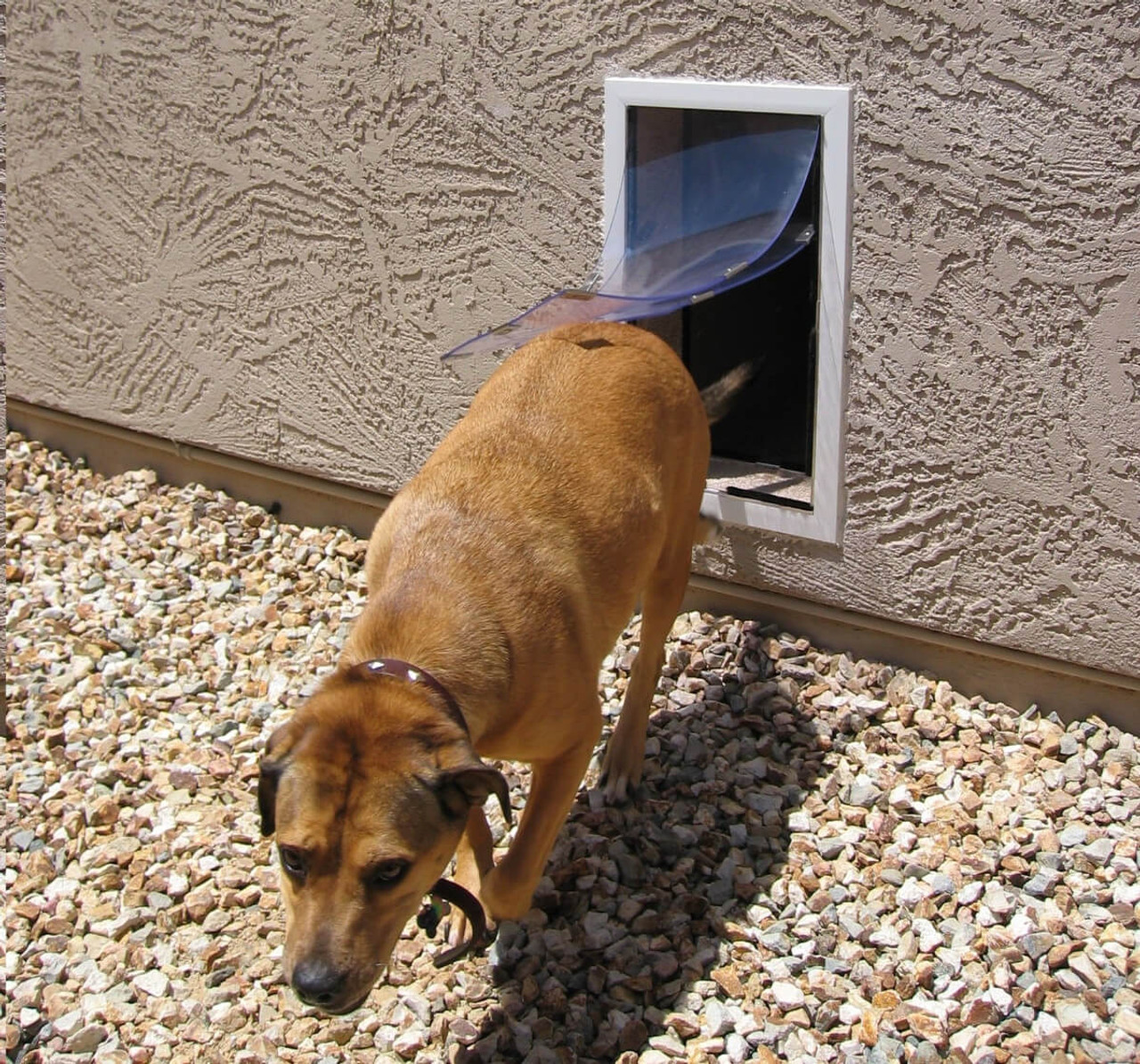 Hale doggy Doors for walls can be installed in stucco walls
