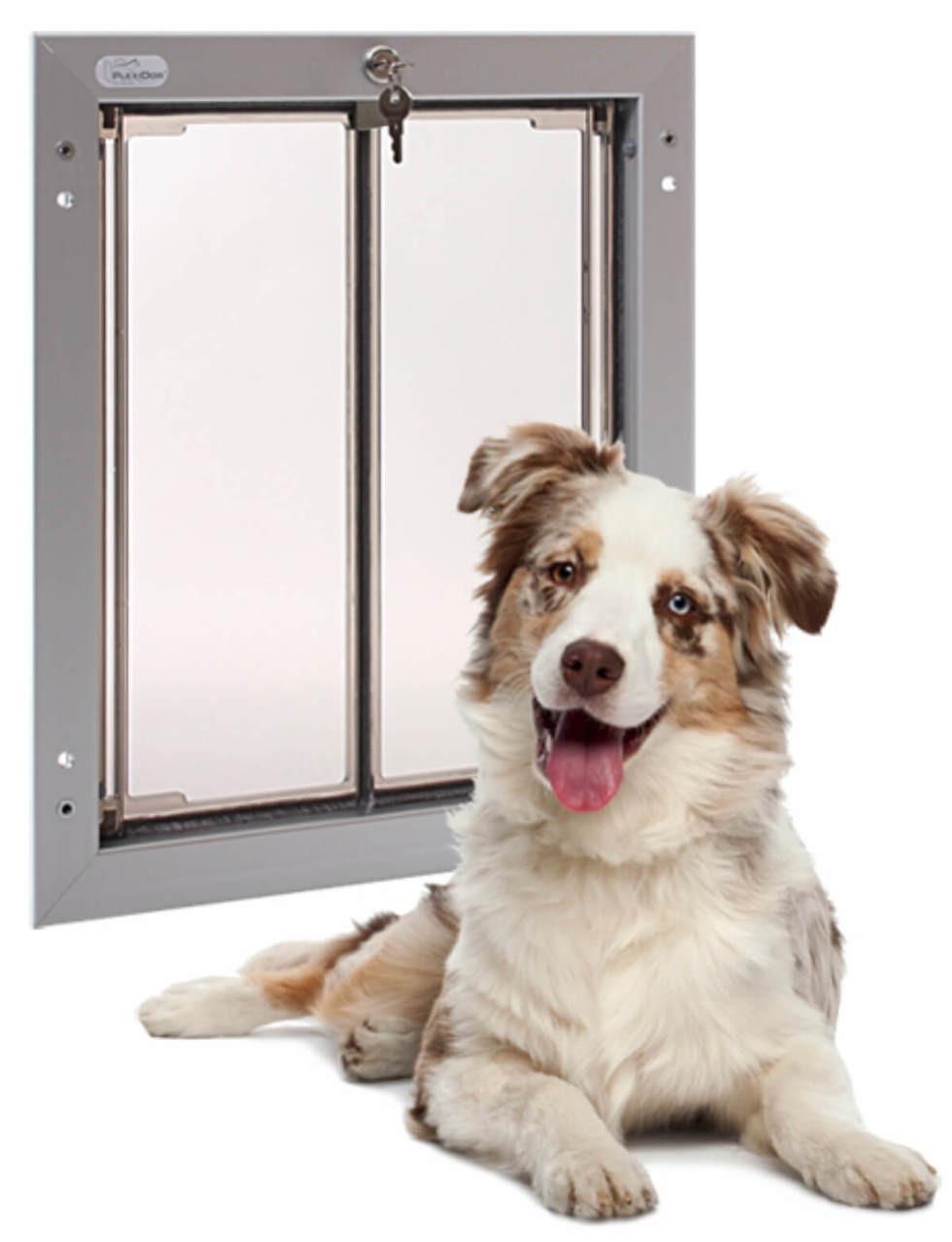 PlexiDor Wall dog door is our pick for the best looking pet door