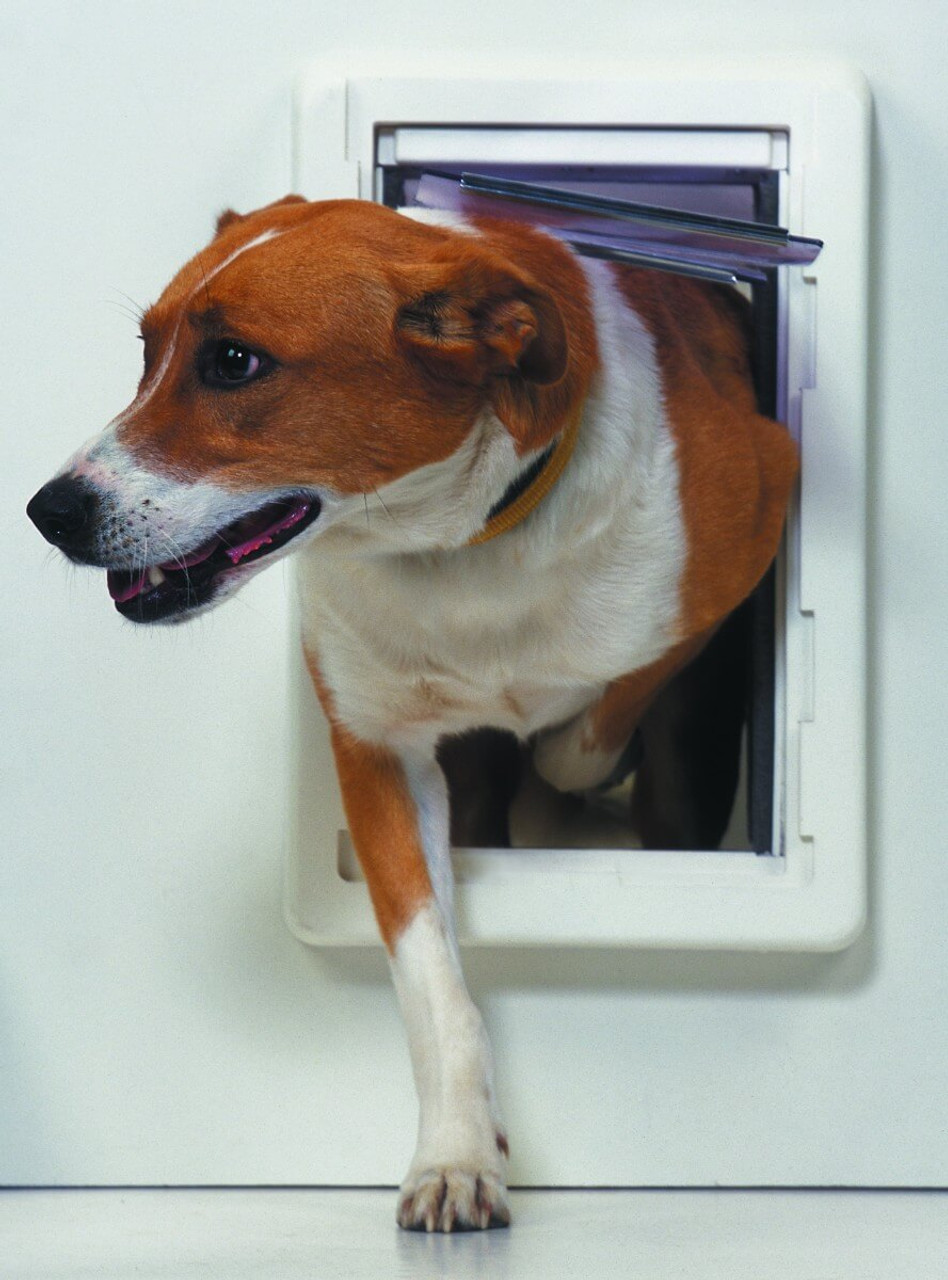 Ideal Ruff Weather pet doors protrude off of the surface of the door or wall about 2 1/2 inches on each side