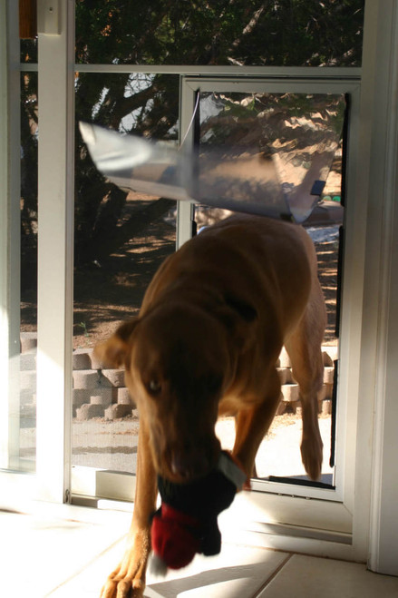 ... Hale Screen Dog Doors Come With A Stabilizer Bar In The Tall Large And  Larger Sizes ...