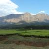 Kenya Tambaya