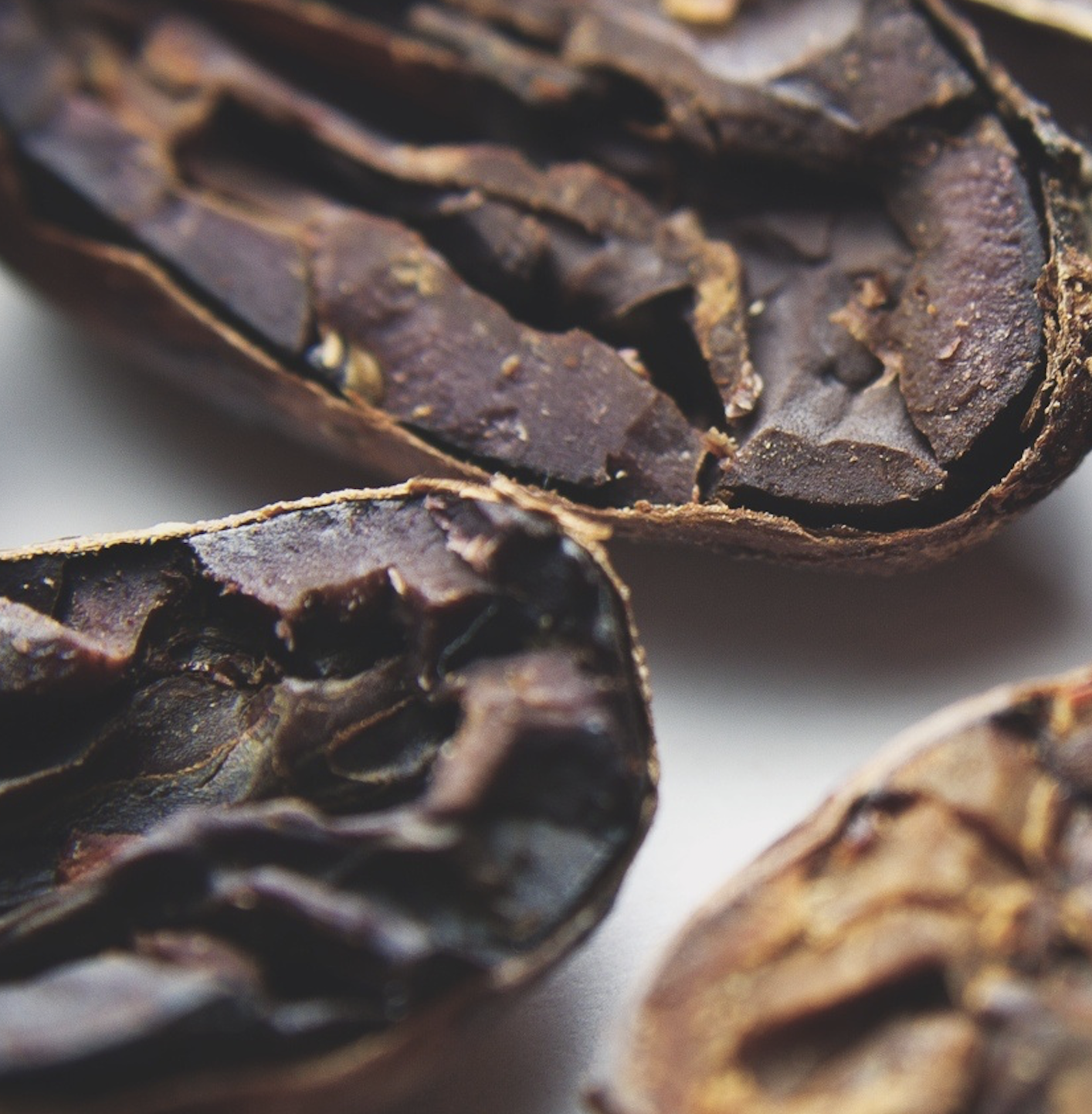 close-up-view-of-raw-cocoa-bean.png